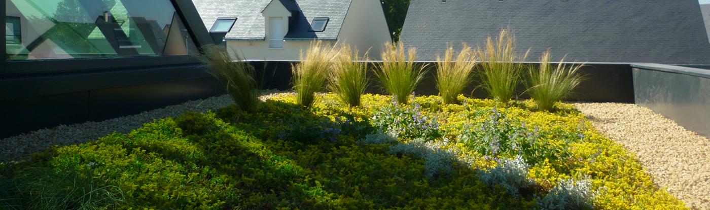La solution globale pour tous vos projets d'étanchéité, d'isolation et de végétalisation